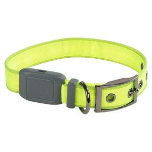 Nite Ize NiteDog Rechargeable LED Collar - Medium - Lime Green