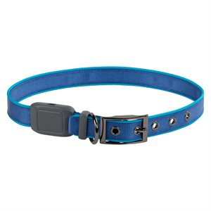 Nite Ize NiteDog Rechargeable LED Collar - Extra-Large - Blue
