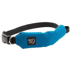 Nite Ize RadDog All-In-One Collar + Leash - Large - Blue
